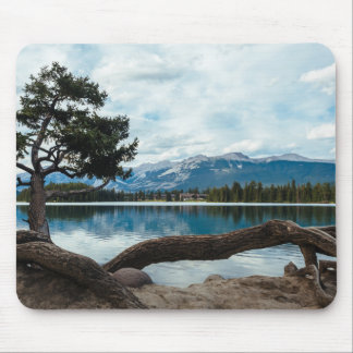 Set down your roots to find peace mouse pad
