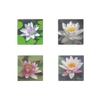 set of 4 stone magnets, FLORAL/LOTUS BLOSSOMS Stone Magnet