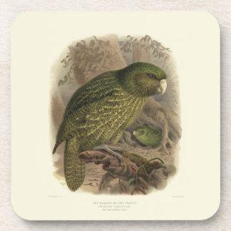 Set of 6 Kakapo Coasters