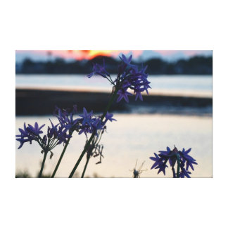 Set on violet gallery wrapped canvas