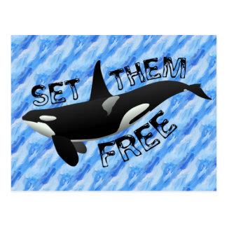 Set them free orca postcard