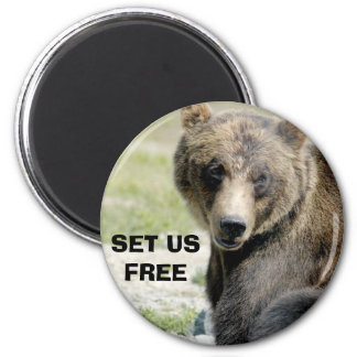Set Us Free, Save the Bears 2 Inch Round Magnet