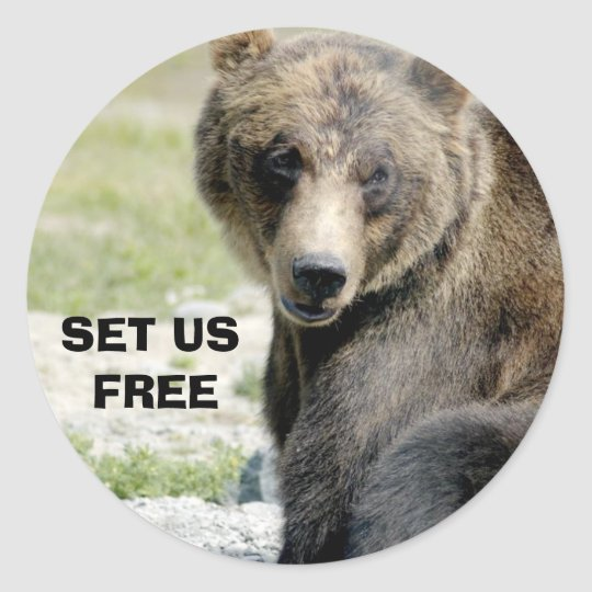 Set Us Free, Save the Bears Classic Round Sticker