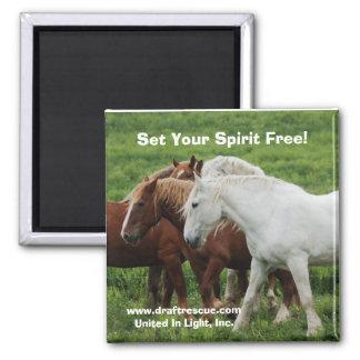Set Your Spirit Free! Magnet
