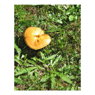 Seta amarilla en un prado verde plantillas de membrete
