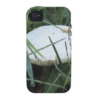 Seta blanca en un prado verde iPhone 4/4S carcasa