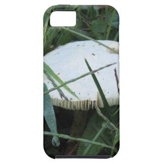 Seta blanca en un prado verde iPhone 5 funda