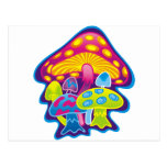 Seta con colores hermosos postal