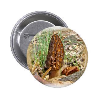 Seta de la morilla pin redondo 5 cm