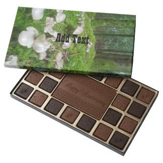 Seta del bosque caja de bombones variados con 45 piezas