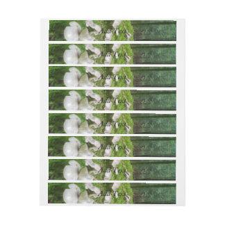 Seta del bosque etiquetas postales