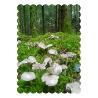 Seta del bosque anuncio personalizado