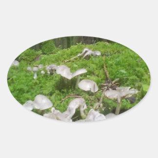 Seta del bosque pegatina ovalada