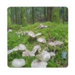 Seta del bosque posavasos de puzzle