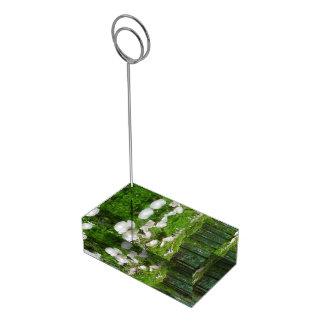 Seta del bosque soporte para tarjeta de mesa