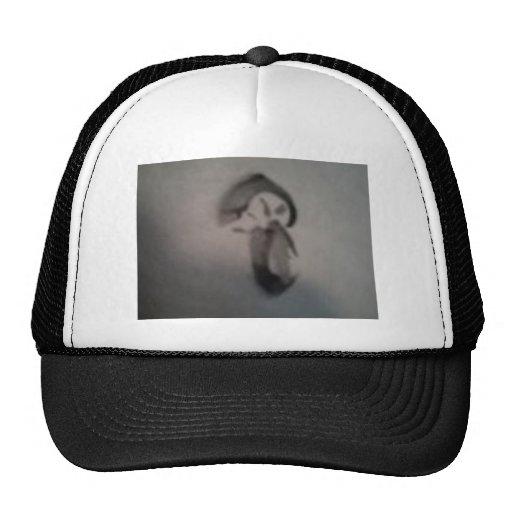 seta del sumia gorra