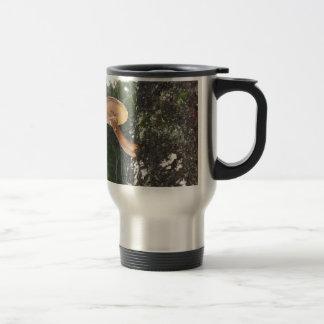 Seta en tronco de árbol taza de café