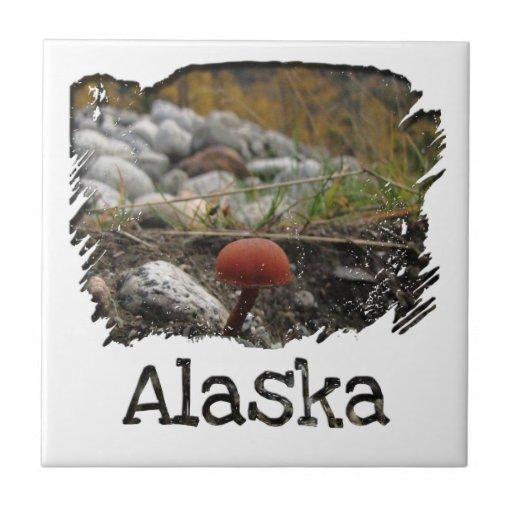 Seta en un banco rocoso; Recuerdo de Alaska Azulejos Ceramicos