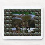 SETA: Las flores salvajes de los hongos DISFRUTAN  Tapete De Ratón