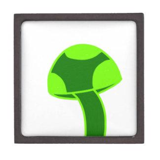 Seta manchada verde caja de joyas de calidad