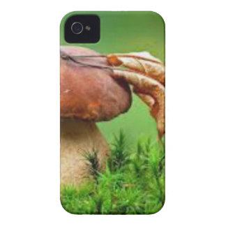 Seta sola iPhone 4 Case-Mate cobertura