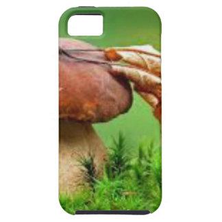 Seta sola iPhone 5 carcasas