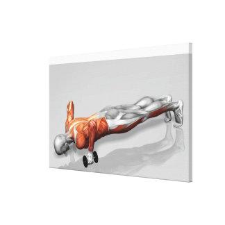 Setanta Push Up 4 Canvas Print