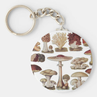 Setas botánicas del vintage llavero redondo tipo pin