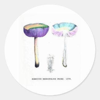 Setas botánicas del vintage pegatina redonda
