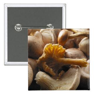 Setas de ostra, setas de shiitake, castaña pin