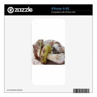 Setas de Porcini aisladas en el fondo blanco iPhone 4S Calcomanías