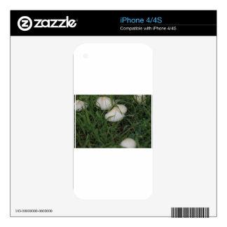 Setas en hierba skins para eliPhone 4