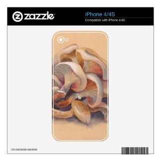 Setas iPhone 4 Calcomanías