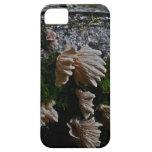 Setas salvajes del bosque de Oregon iPhone 5 Fundas
