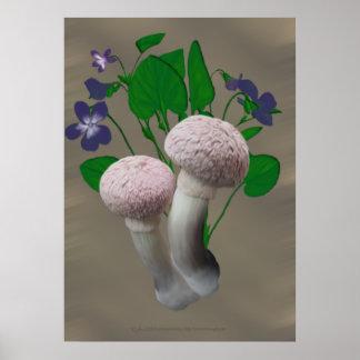 Setas y violetas rosadas mullidas poster