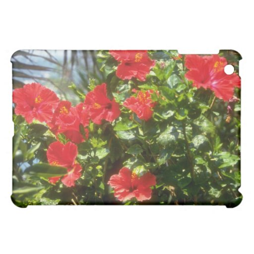 Seto del hibisco, flores de España