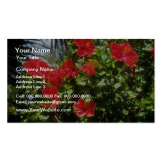 Seto del hibisco, flores de España Plantillas De Tarjeta De Negocio