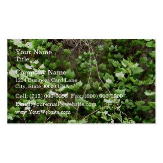 Seto verde con las flores amarillas minúsculas tarjeta de negocio