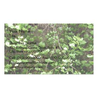 Seto verde con las flores amarillas minúsculas tarjetas de visita