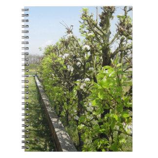 Seto verde de los manzanos de la pera y con el spiral notebook