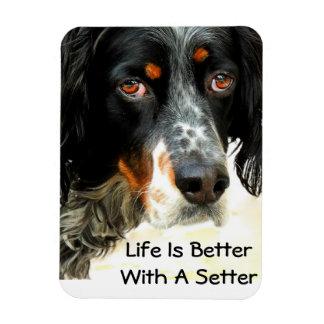 Setter Love Photo Magnet