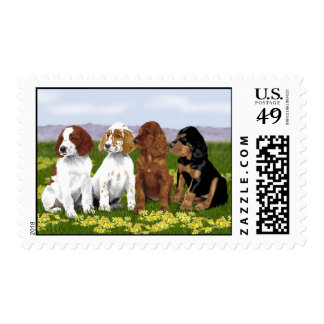 Setter puppy postage stamps