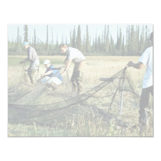 Setting a waterfowl capture net invite