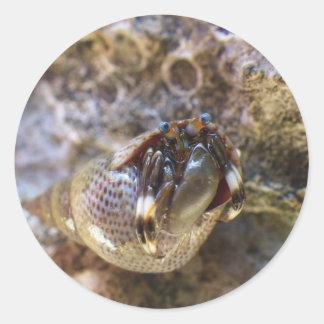 Seurat's Hermit Crab Round Sticker