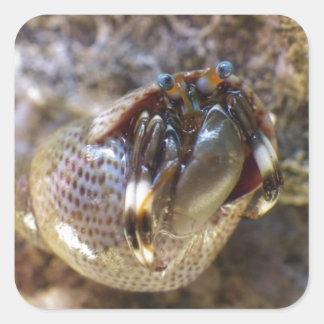 Seurat's Hermit Crab Sticker