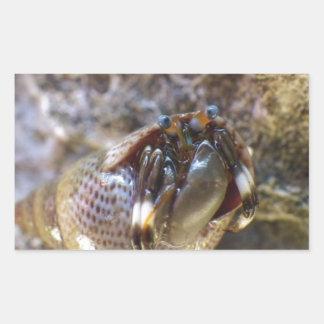 Seurat's Hermit Crab Rectangle Stickers
