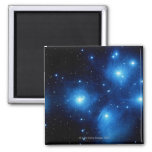 Seven 2 Inch Square Magnet