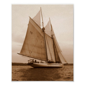 Seven Sails on the Salish Sea Poster