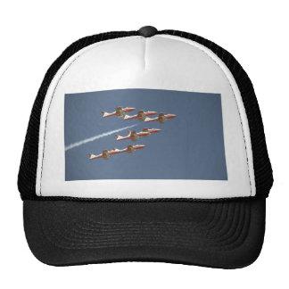 Seven Snowbirds In Flight Trucker Hat