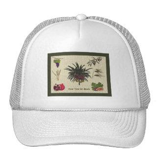 Seven Species Trucker Hat